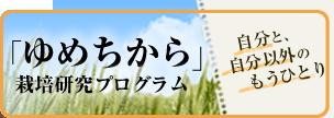 yumechikara_bnr_04